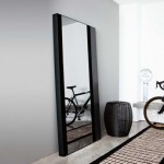 Mesmerizing Full Length Mirrors For Modern Homes